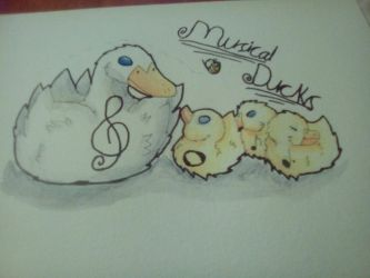 Musical Ducks  by neotasict