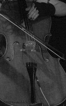 apocalyptica ... cello b_w by DTHunsterblich