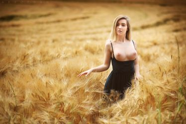 Summerdreams by ArtofdanPhotography