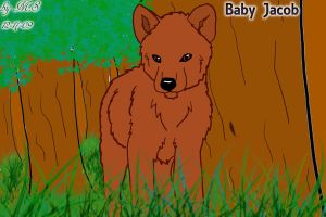 Baby Jacob Wolf by TallyBaby13