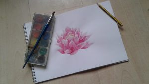 Lotus / Water lily by VaiiVaij