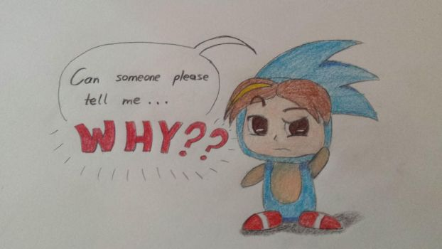 Sonic the Grumphog by Wrenbird13
