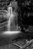 golden cascade B+W by CrisisCorps