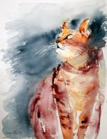 cat watercolor by vogesen