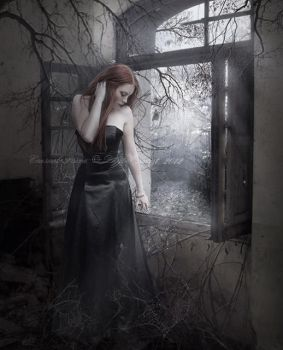 Dark Poetry by Aeternum-designs