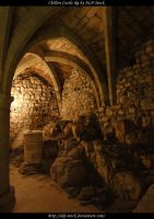 Chillon Castle - Dungeon 15 by ALP-Stock