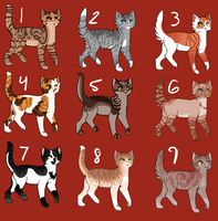 Hot Sweet Cat Adopts .:WITH DISCOUNTS:. by barn-owls
