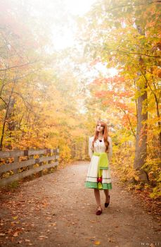A walk in the woods- Spice and Wolf (3) by kazeplay