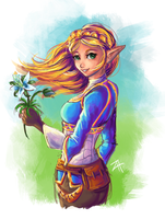 Princess Zelda by itftjte
