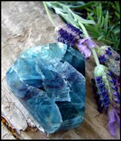 Rainbow Fluorite - in my lavender garden by andromeda