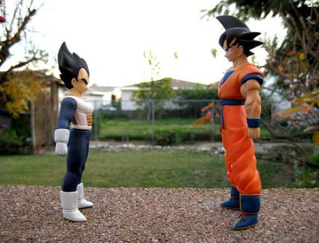 Goku and Vegeta . +5 by DBpictures