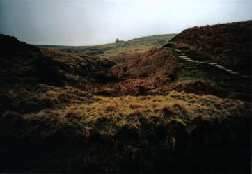 Wuthering Heights by All-U-Never-Wanted