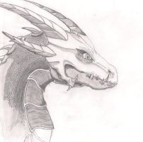 Unnamed Dragon Bust by Me. by JayceLazarus