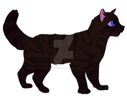 Cheap Cat Design Auction by DrowsyInsomnia