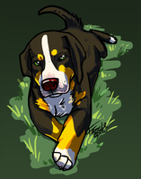 greater Swiss Mountain Dog 2 by fazzle