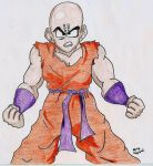 No not Dragon Ball Art colored by Selfinflikted