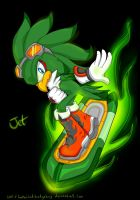 Jet the Hawk by Fantailed-Hedgehog