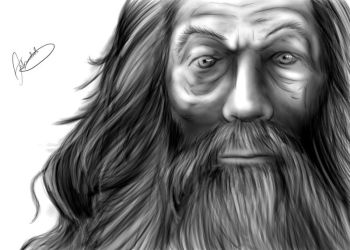 Gandalf The Grey by AlexOakenshield