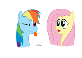 Rainbow Dash and Fluttershy by ColonelWalther