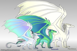 Aurora Family Reference by xTheDragonRebornx