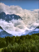 Mist in the Mountains by wb-skinner