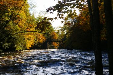 Autumn River by n2large0shirt
