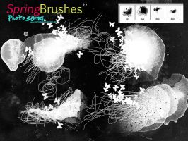 Spring Brushes by photosoma