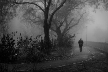 Fog at the Park by ghostrider-in-ze-sky