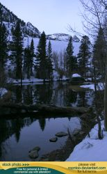 Pond in winter 3 by RoonToo
