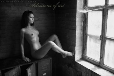 Selections of Art by ArtofdanPhotography