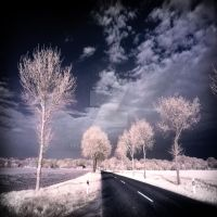 Country Road infrared by MichiLauke