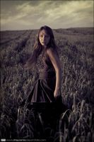 Among the Field of Barley by ShaySamia