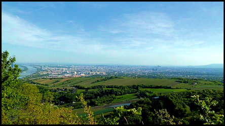 View Over Vienna From Leopoldsberg-004 by Charmadige