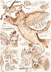 Cattawampus by Kway100