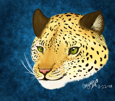 Realistic Leopard Portrait by unistar2000