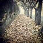 la calle by walalapancho