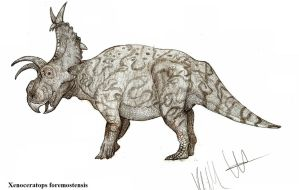 Xenoceratops formostensis by Teratophoneus