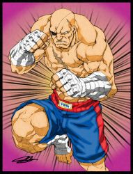 Colours on Joe NG's Sagat by hellbat