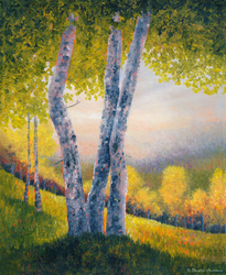Afternoon Trees by DouglasCastleman