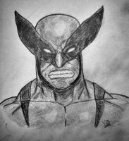 Wolverine by vickeey08