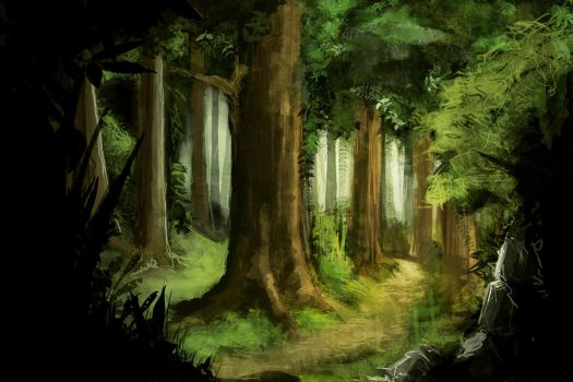 Forest by eliaslewinsky