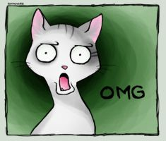 OMG Cat by DominoRawket