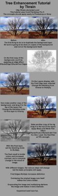 Enhanced Tree tutorial by Tkrain