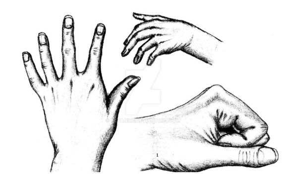 Hands Practice Black and White by deyanire