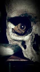 Butterfly in eye socket phone wallpaper by MailliWilliaM