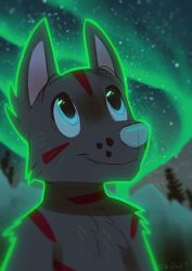 Northern Lights by OrcaOwl