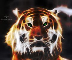 Eye of the tiger. by noune83