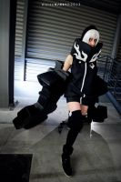 Strength Cosplay - BRS by Rocchan94
