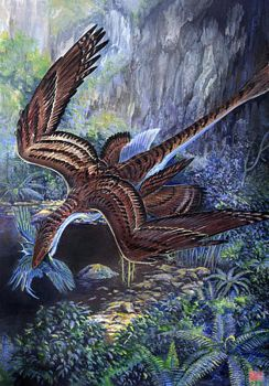 Microraptor gui  Hunting by cheungchungtat