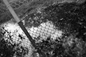 Fence Reflection by periwinklepinwheel